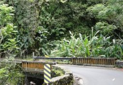 cool bridge on the Hana Highway