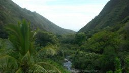 things to do in maui hiking iao valley