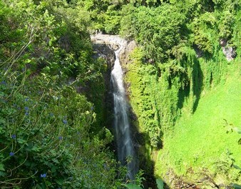 Picture of Waimoku Falls from our hike in the Maui jungle on the Pipiwai Trail.