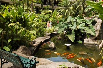 Picture of the koi pond at the Aston Paki Maui condo rentals near Kaanapali Beach.