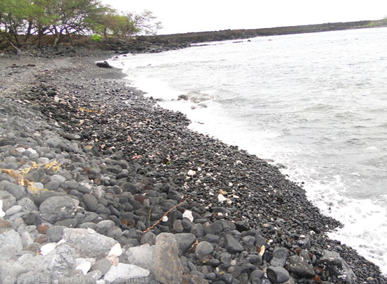 Black rocky beach at Ahihi Kinau (the dumps) on Maui.