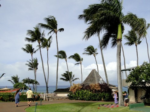 Picture of the Gazebo Restaurant at the Napili Shores Resort, Maui.