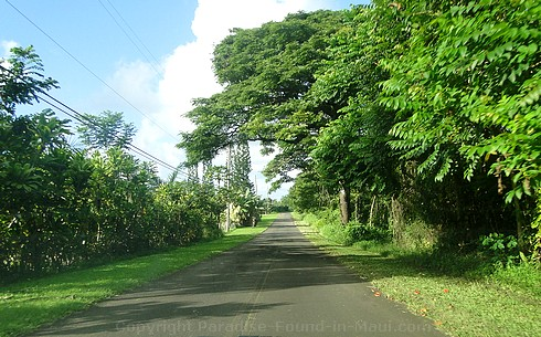 Piccture of Hana Airport Road on Maui, Hawaii.