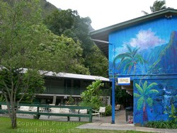 Picture of a tropical mural on the side of the Hawaii Nature Center cafe on Maui