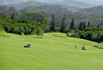 Kapalua golf-course cook pines along fairway