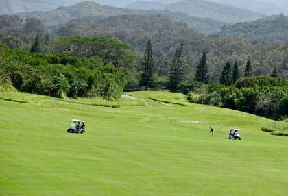 Kapalua golf-course cook pines along fairway