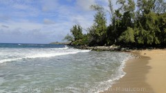 Picture of D. T. Fleming Beach in Kapalua, Maui, Hawaii