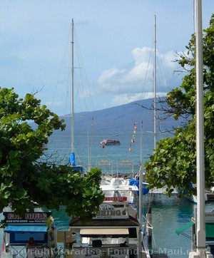 Picture of boat in Lahaina Harbor, Maui, Hawaii