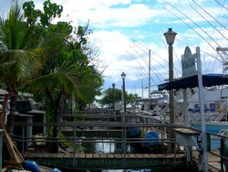 Picture of docks at the Lahaina Harbour on the island of Maui, Hawaii.