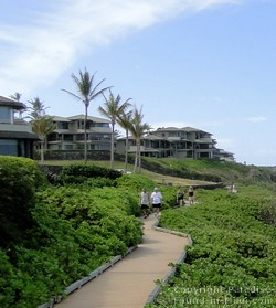 Picture of the Kapalua Coastal Trail that runs alongside Oneloa Beach on Maui, Hawaii.