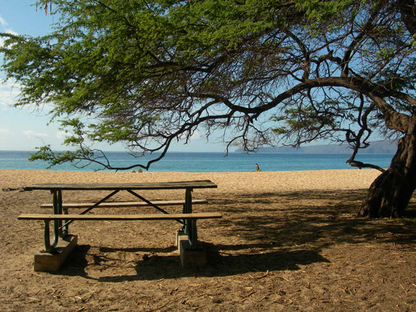 Picnic at the Beach in Maui Hawaii