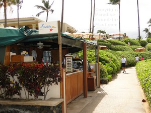Picture of Snorkels in front of the Four Seasons Resort at Wailea Beach on the island of Maui, Hawaii.