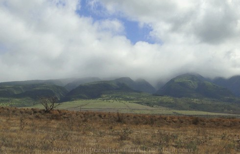 Picture of West Maui Mountain