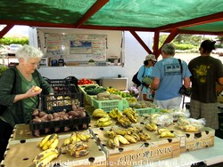 Picture of Farmer's Market at Puukoli Station on Maui, Hawaii
