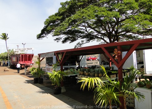 Picture of Puukoli Station for the Sugar Cane Train in Maui, Hawaii.
