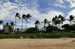 Picture of landscaping and backdrop at Wailea Beach on the island of Maui, Hawaii.