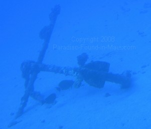 underwater anchor off Maui