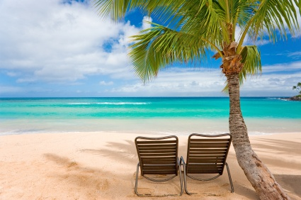 Picture of 2 beach chairs beneath a palm tree on a sunny beach in Maui, Hawaii.