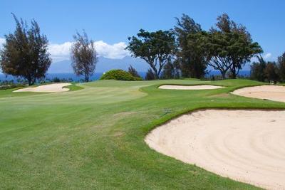 Maui Golf Hole Along the Ocean