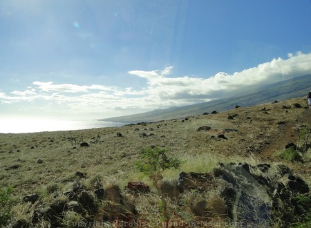 Picture of the scenery on the road past Hana, the forbidden southern route.