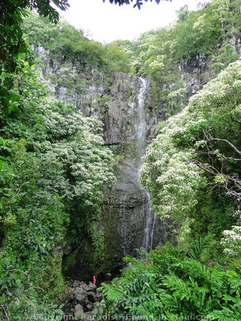 Picture of Wailua Falls.