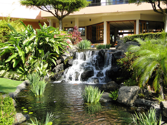 Tropical Landscaping at the Marriott Ocean Club