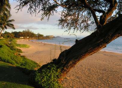 Kama'ole Beach is one of the best beaches in Maui!