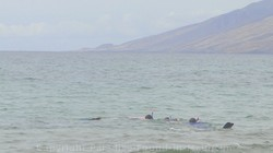 Picture of snorkeling in Maui at Keawakapu Beach.