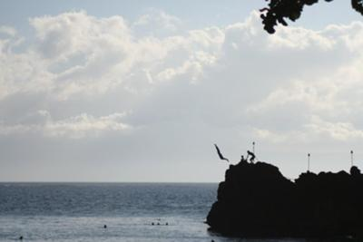 Black Rock Divers Kaanapali