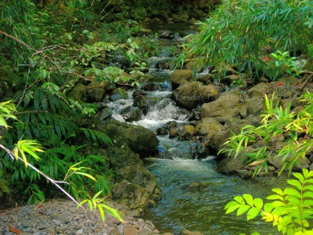 maui pictures stream with small waterfalls on Pipiwai Trail