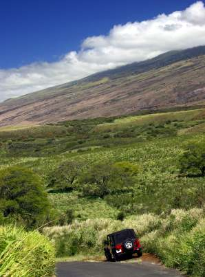Where Cant You Travel Rental Car Maui