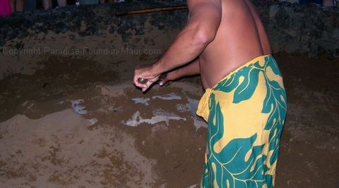 Picture of islander unearthing Kalua Pig at the Old Lahaina Luau, Maui.