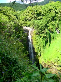 Picture of Waimoku Falls along the Pipiwai Trail, Maui, Hawaii.