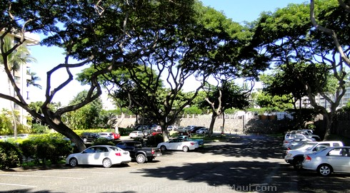 Picture of the parking lot for Polo Beach in Wailea, Maui, Hawaii.