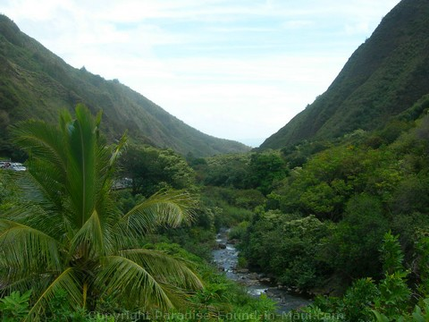 Picture of Iao Valley State Park.