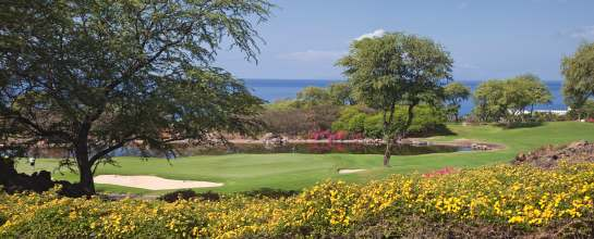 maui golf courses Wailea colourful flowers
