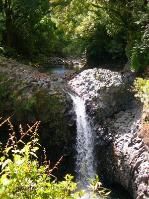 Picture of a tropical waterfall in Maui on the Pipiwai Trail.