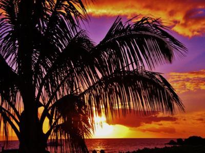 Sunset In Kaanapali