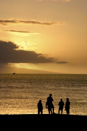 family whale watching in Maui from land