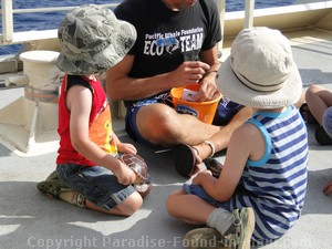 Picture of kids on a whale watch with the Pacific Whale Foundation.