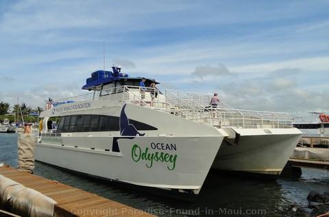 Picture of the Ocean Odyssey in Maalaea Harbor.