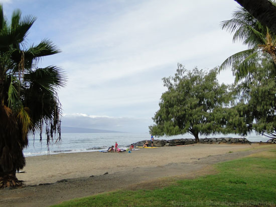 Picnic area at Launiupoko Beach Park