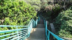 Picture of staircase to Mokule'ia Bay, Kapalua, Maui, Hawaii
