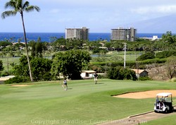 Picture of a golf course with an ocean view in Maui, Hawaii.