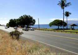 Picture of the highway in Maui, Hawaii.
