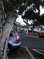 Picture of parking lot in Wailuku Maui, Hawaii.