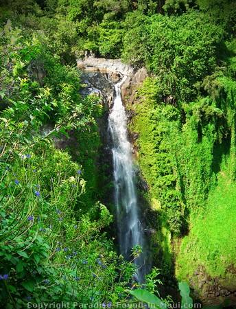 Makahiku Falls and Infinity Pool