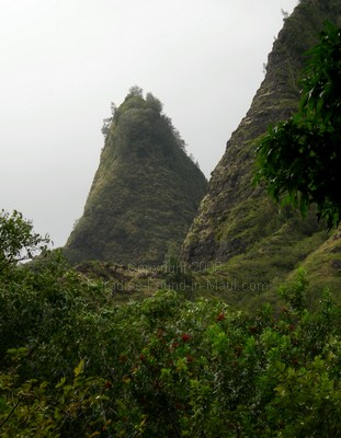 picture of the Iao Needle in the Maui Iao Valley State Park