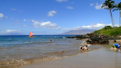Picture of tourists having fun at Polo Beach in Wailea