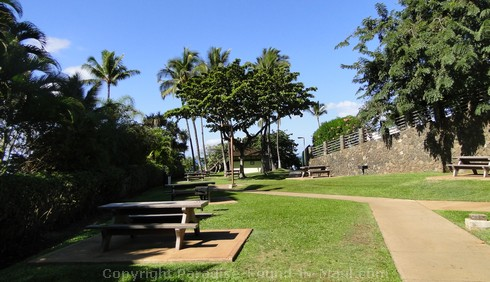 Picture of picnic area at Polo Beach